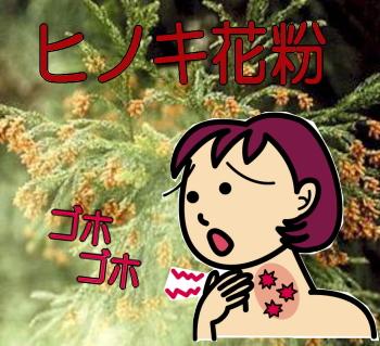 ヒノキ花粉症、咳が辛い