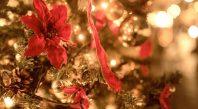 クリスマスのイルミネーション03
