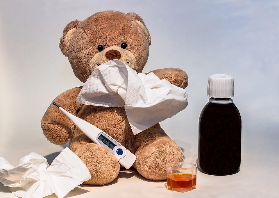クマさんインフルエンザ